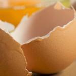 egg_mini